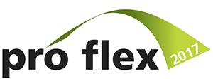 presentation @ pro-flex 2017